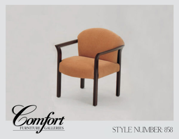 Accent Chairs-858